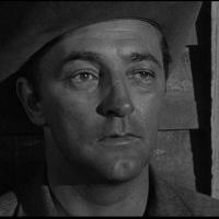 ARMADO ATÉ OS DENTES (The Man With the Gun, 1955)
