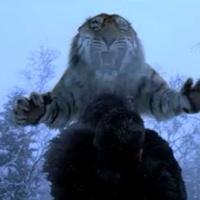 DVD REVIEW: A BATALHA NA MONTANHA DO TIGRE (2014); A2 FILMES