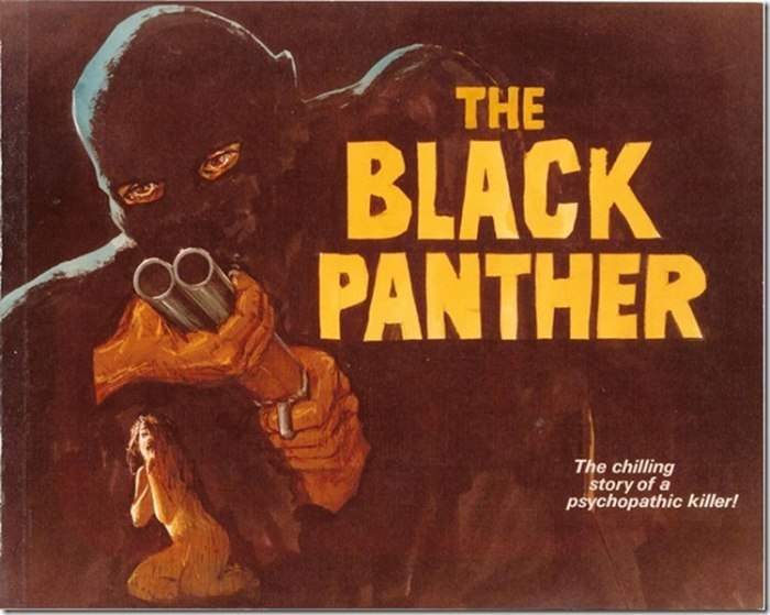 theblackpanther323941